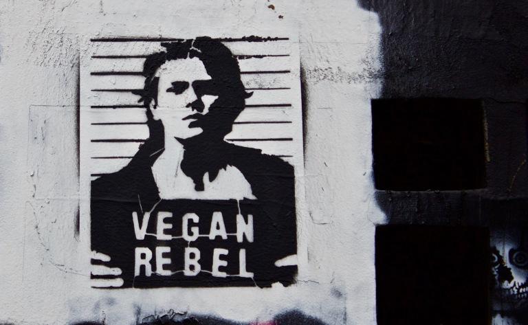 Vegan Rebel (LA, CA 2018)